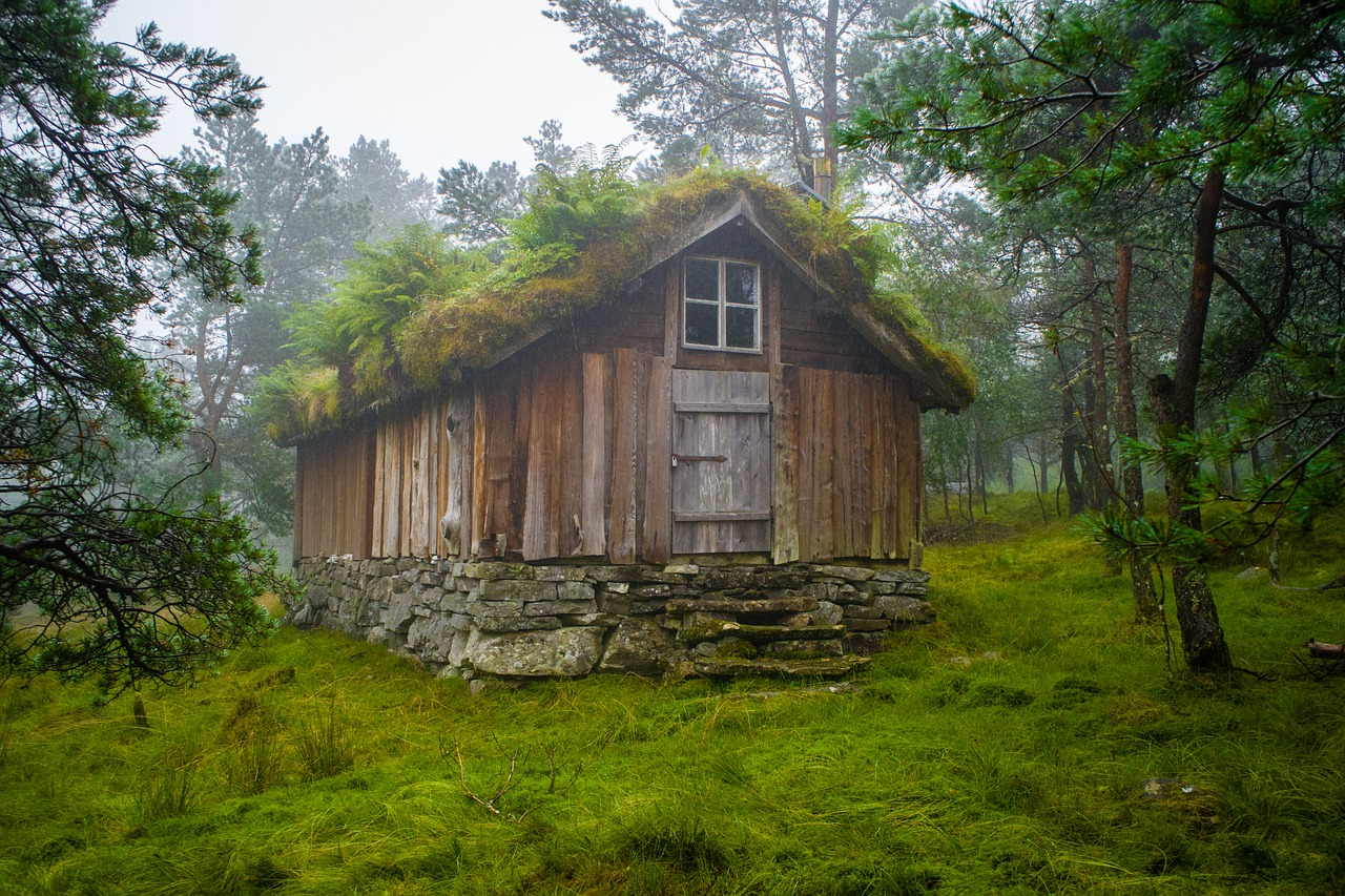 Wooden House Forest Cabin Cottage  - fdsfe67854 / Pixabay